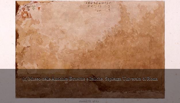 TARQ114-29.JPEG (100×57)